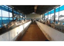 VIAGEM ANUAL 2012 - CONTROLE LEITEIRO OFICIAL
