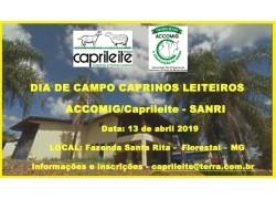 DIA DE CAMPO FAZENDA SANRI 13/04/2019