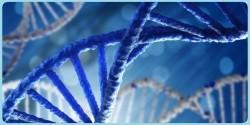 MINISTÉRIO CREDENCIA NOVO LABORATÓRIO PARA DNA EM OVINOS E CAPRINOS