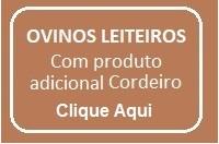 OVINOCULTURA LEITEIRA com produto adicional CORDEIRO